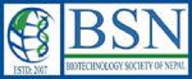 Access To Journal Databases By BSN